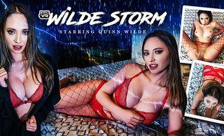 Wilde Storm - Quinn Wilde